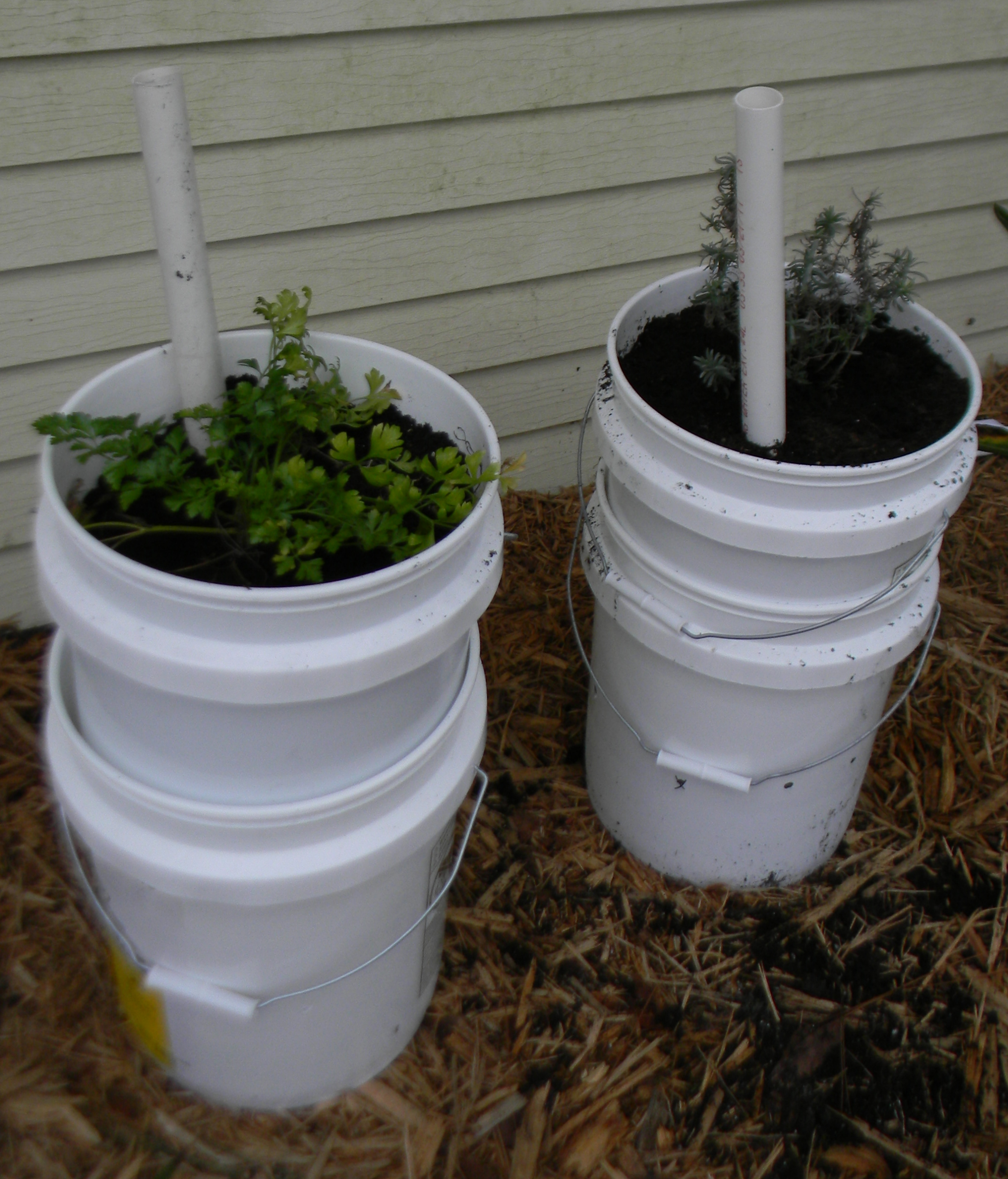 self watering garden containers 5 gallon buckets upated