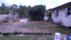 Raspberry Fence